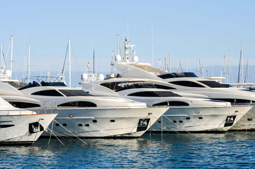 a line of docked yachts